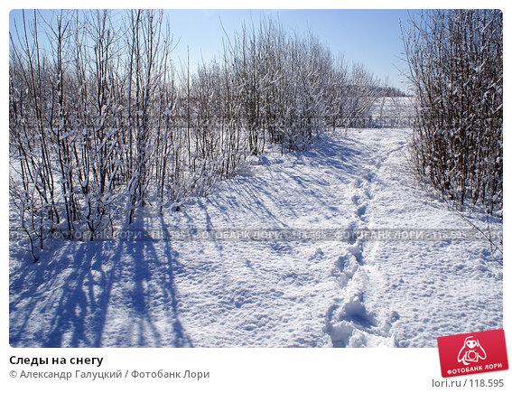 Купить «Следы на снегу», фото № 118595, снято 1 апреля 2006 г. (c) Александр Галуцкий / Фотобанк Лори