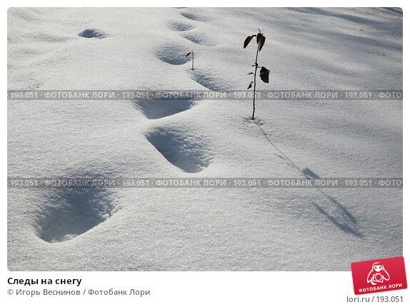 Следы на снегу, фото № 193051, снято 3 февраля 2008 г. (c) Игорь Веснинов / Фотобанк Лори