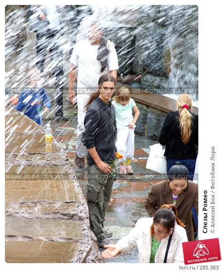Слезы Ромео, эксклюзивное фото № 285383, снято 3 сентября 2006 г. (c) Алексей Бок / Фотобанк Лори