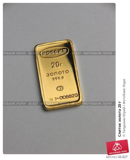 Слиток золота 20 г, фото № 26827, снято 26 марта 2007 г. (c) Талдыкин Юрий / Фотобанк Лори