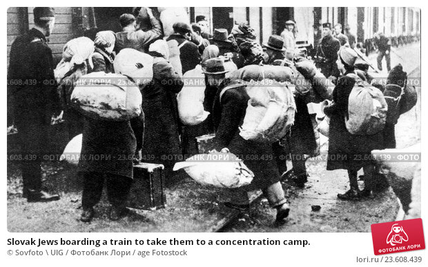 chapters about trains transporting jews to concentration camps The deportation of the hungarian jews two transport trains inside the approximately 110,000 at forced labor in the auschwitz concentration camp.