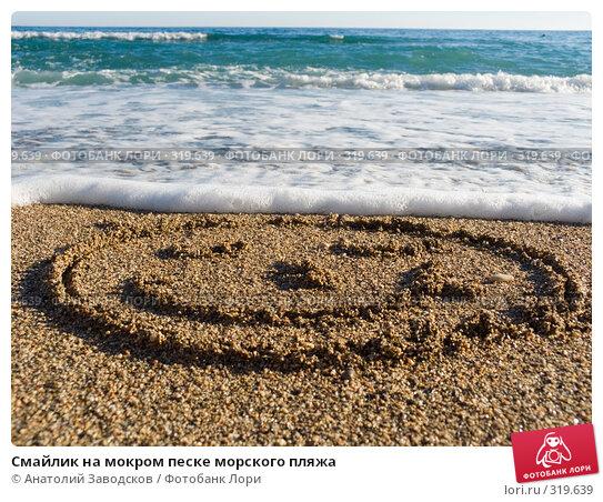 Смайлик на мокром песке морского пляжа, фото № 319639, снято 19 сентября 2007 г. (c) Анатолий Заводсков / Фотобанк Лори