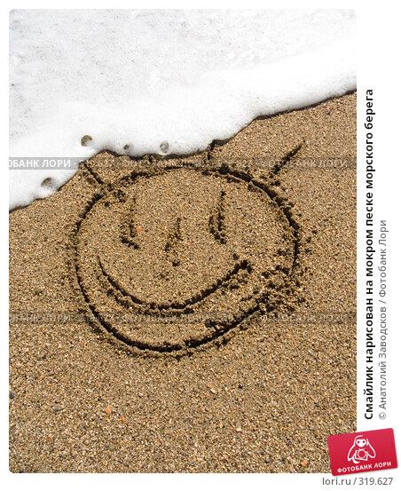 Смайлик нарисован на мокром песке морского берега, фото № 319627, снято 19 сентября 2007 г. (c) Анатолий Заводсков / Фотобанк Лори