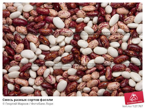 Смесь разных сортов фасоли, фото № 127767, снято 20 июля 2006 г. (c) Георгий Марков / Фотобанк Лори