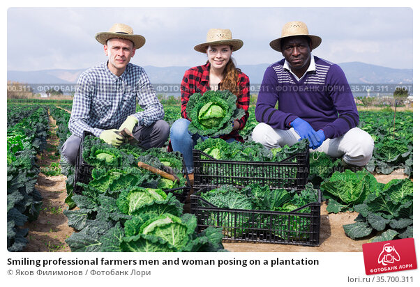 Smiling professional farmers men and woman posing on a plantation. Стоковое фото, фотограф Яков Филимонов / Фотобанк Лори