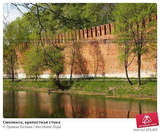 Купить «Смоленск, крепостная стена», фото № 273307, снято 5 мая 2008 г. (c) Примак Полина / Фотобанк Лори