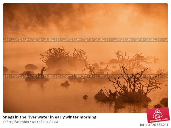 Купить «Snags in the river water in early winter morning», фото № 26352211, снято 19 января 2017 г. (c) Serg Zastavkin / Фотобанк Лори
