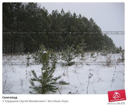 Снегопад, фото № 69075, снято 24 декабря 2006 г. (c) Кардашов Сергей Михайлович / Фотобанк Лори