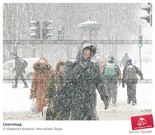 Купить «Снегопад», фото № 322831, снято 31 января 2005 г. (c) Vladimirs Koskins / Фотобанк Лори