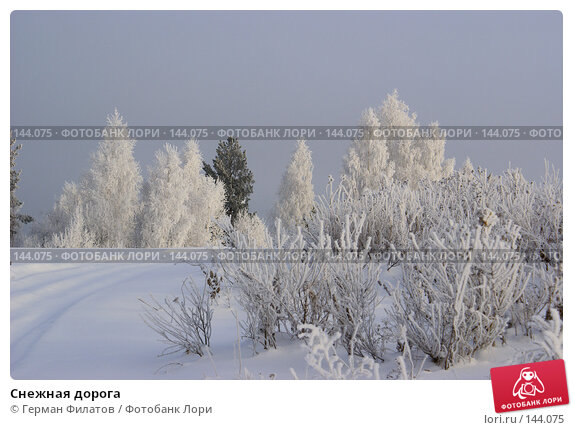 Снежная дорога, фото № 144075, снято 8 ноября 2007 г. (c) Герман Филатов / Фотобанк Лори