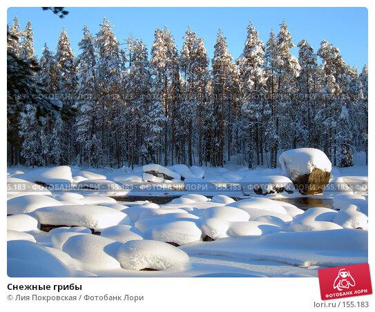 Купить «Снежные грибы», фото № 155183, снято 11 февраля 2006 г. (c) Лия Покровская / Фотобанк Лори