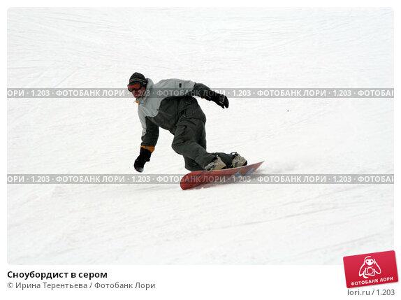 Купить «Сноубордист в сером», эксклюзивное фото № 1203, снято 22 февраля 2006 г. (c) Ирина Терентьева / Фотобанк Лори