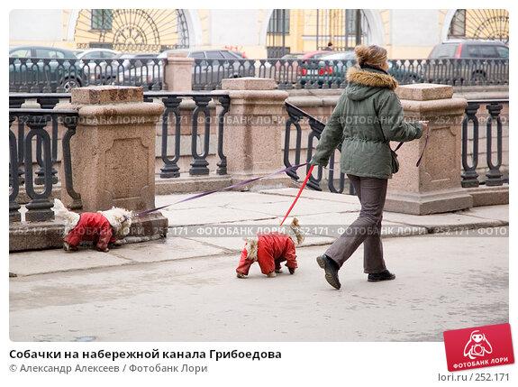 Собачки на набережной канала Грибоедова, эксклюзивное фото № 252171, снято 15 апреля 2006 г. (c) Александр Алексеев / Фотобанк Лори