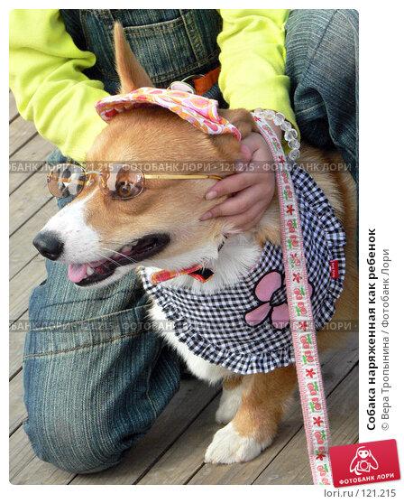 Собака наряженная как ребенок, фото № 121215, снято 27 октября 2007 г. (c) Вера Тропынина / Фотобанк Лори
