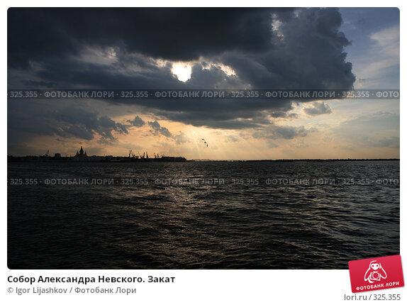 Собор Александра Невского. Закат, фото № 325355, снято 15 июня 2008 г. (c) Igor Lijashkov / Фотобанк Лори