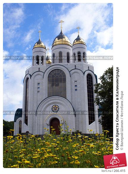 Собор Христа Спасителя в Калининграде, фото № 266415, снято 31 июля 2007 г. (c) Валерий Шанин / Фотобанк Лори
