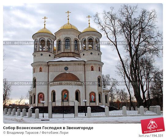 Собор Вознесения Господня в Звенигороде, фото № 194331, снято 21 ноября 2007 г. (c) Владимир Тарасов / Фотобанк Лори