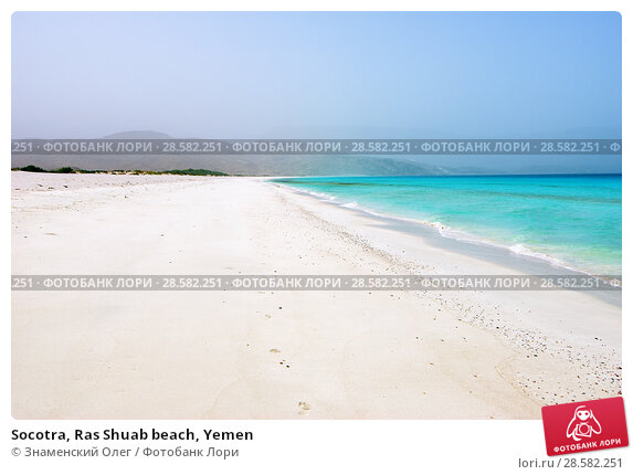 Купить «Socotra, Ras Shuab beach, Yemen», фото № 28582251, снято 8 марта 2010 г. (c) Знаменский Олег / Фотобанк Лори
