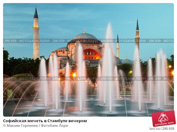 Софийская мечеть в Стамбуле вечером, фото № 290939, снято 24 мая 2006 г. (c) Максим Горпенюк / Фотобанк Лори