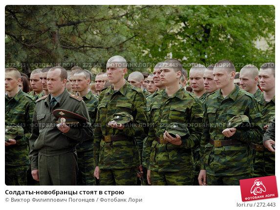 Солдаты-новобранцы стоят в строю, фото № 272443, снято 26 апреля 2008 г. (c) Виктор Филиппович Погонцев / Фотобанк Лори