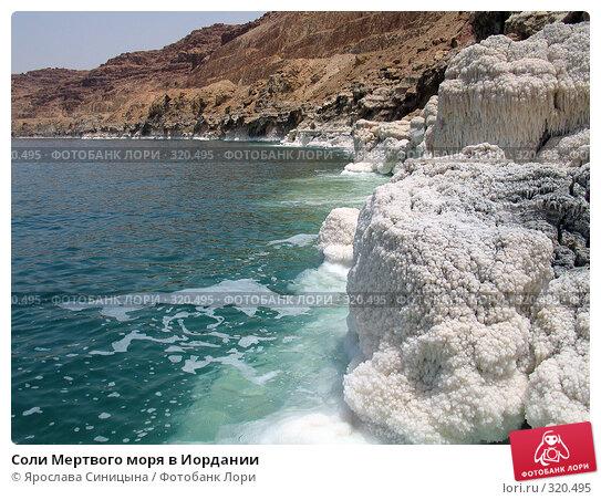Купить «Соли Мертвого моря в Иордании», фото № 320495, снято 6 июня 2007 г. (c) Ярослава Синицына / Фотобанк Лори