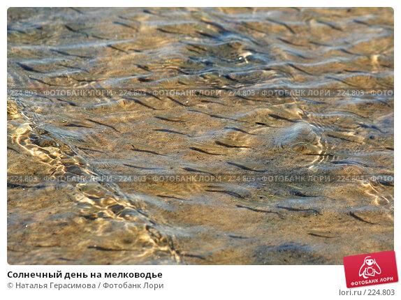 Купить «Солнечный день на мелководье», фото № 224803, снято 24 июля 2007 г. (c) Наталья Герасимова / Фотобанк Лори
