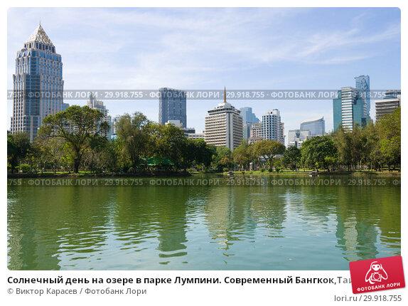 Купить «Солнечный день на озере в парке Лумпини. Современный Бангкок,Таиланд», фото № 29918755, снято 1 января 2019 г. (c) Виктор Карасев / Фотобанк Лори