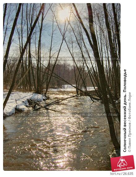 Купить «Солнечный весенний день. Половодье», фото № 26635, снято 11 апреля 2006 г. (c) Павел Преснов / Фотобанк Лори