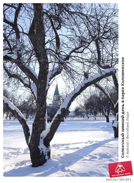 Солнечный зимний день в парке Коломенское, фото № 101011, снято 11 февраля 2007 г. (c) Astroid / Фотобанк Лори