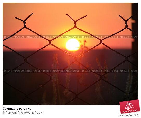 Солнце в клетке, фото № 43391, снято 11 июля 2006 г. (c) Рамиль / Фотобанк Лори