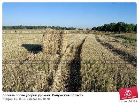 Солома после уборки урожая. Калужская область, фото № 76163, снято 11 августа 2007 г. (c) Юрий Синицын / Фотобанк Лори