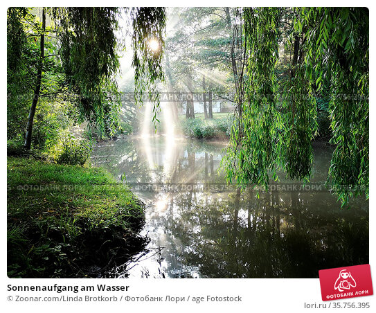 Sonnenaufgang am Wasser. Стоковое фото, фотограф Zoonar.com/Linda Brotkorb / age Fotostock / Фотобанк Лори