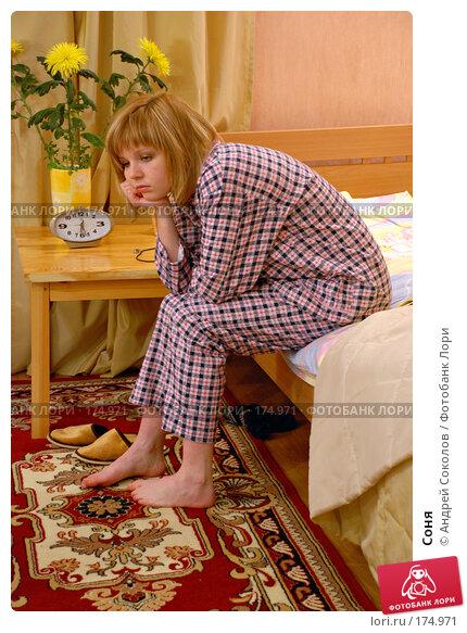 Соня, фото № 174971, снято 12 января 2008 г. (c) Андрей Соколов / Фотобанк Лори