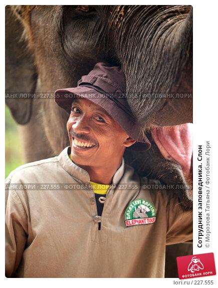 Сотрудник заповедника. Слон, фото № 227555, снято 30 октября 2007 г. (c) Морозова Татьяна / Фотобанк Лори