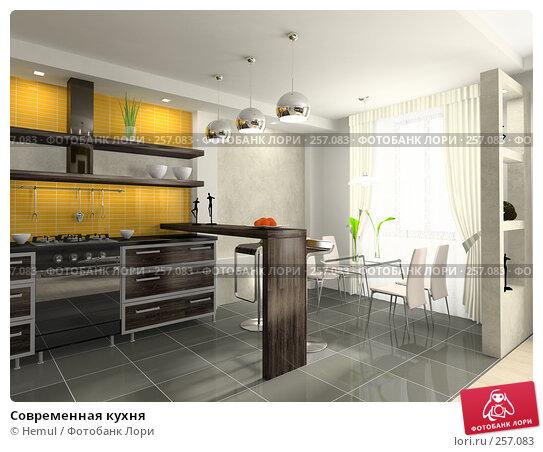 Современная кухня, иллюстрация № 257083 (c) Hemul / Фотобанк Лори