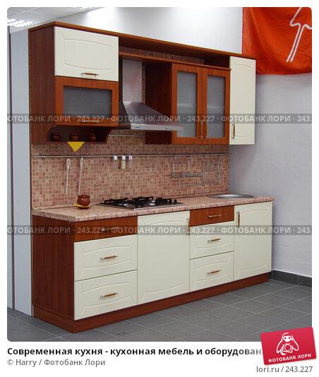 Современная кухня - кухонная мебель и оборудование, фото № 243227, снято 24 февраля 2017 г. (c) Harry / Фотобанк Лори