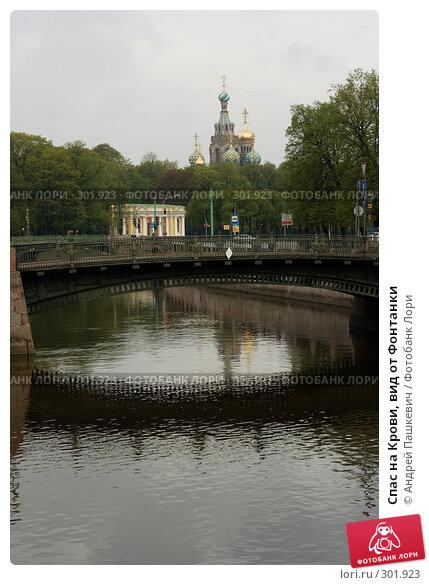 Спас на Крови, вид от Фонтанки, фото № 301923, снято 8 мая 2008 г. (c) Андрей Пашкевич / Фотобанк Лори