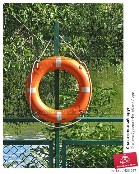 Купить «Спасательный  круг», фото № 426267, снято 27 июля 2008 г. (c) елена бурова / Фотобанк Лори