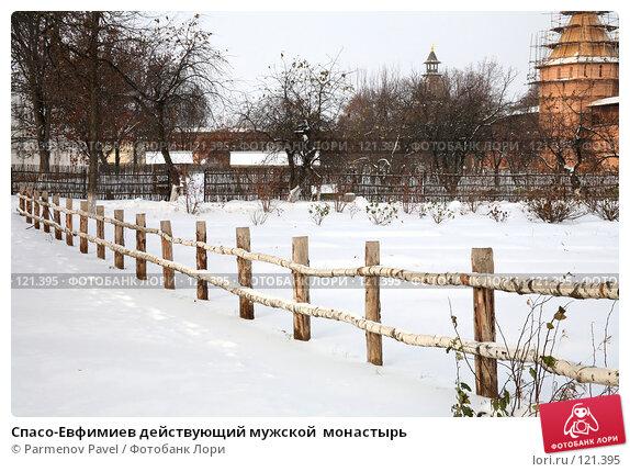 Спасо-Евфимиев действующий мужской  монастырь, фото № 121395, снято 18 ноября 2007 г. (c) Parmenov Pavel / Фотобанк Лори