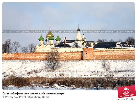 Спасо-Евфимиев мужской  монастырь, фото № 121391, снято 18 ноября 2007 г. (c) Parmenov Pavel / Фотобанк Лори