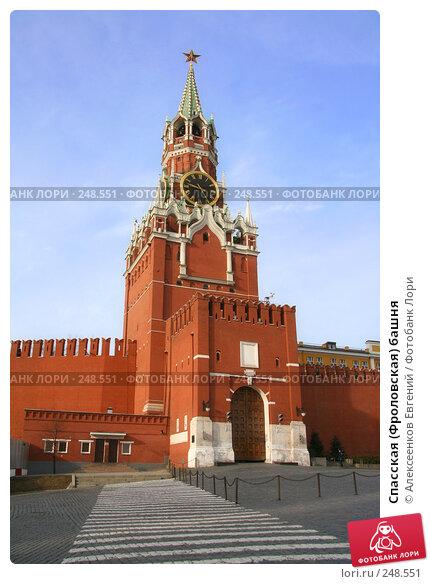 Спасская (Фроловская) башня, фото № 248551, снято 31 марта 2008 г. (c) Алексеенков Евгений / Фотобанк Лори