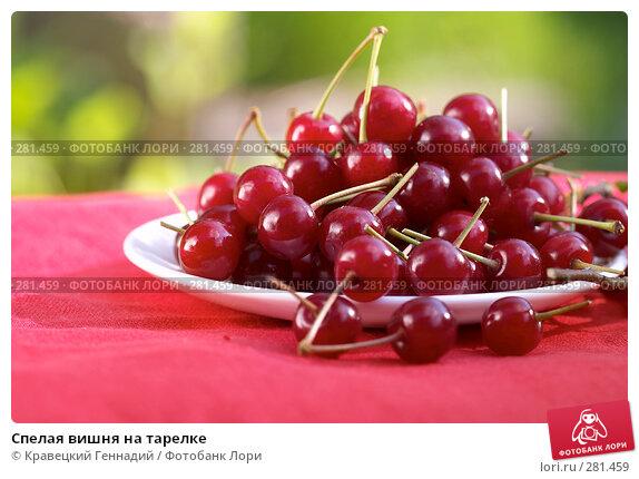 Спелая вишня на тарелке, фото № 281459, снято 25 июня 2004 г. (c) Кравецкий Геннадий / Фотобанк Лори