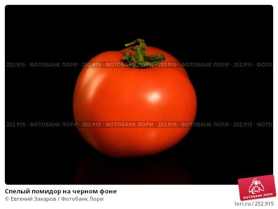 Спелый помидор на черном фоне, эксклюзивное фото № 252915, снято 13 апреля 2008 г. (c) Евгений Захаров / Фотобанк Лори