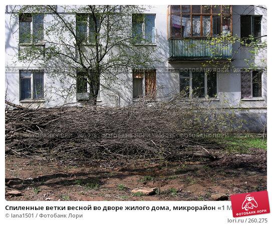 Спиленные ветки весной во дворе жилого дома, микрорайон «1 Мая», Балашиха, Московская область, эксклюзивное фото № 260275, снято 22 апреля 2008 г. (c) lana1501 / Фотобанк Лори