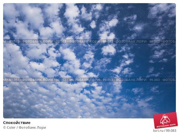 Купить «Спокойствие», фото № 99083, снято 1 июля 2007 г. (c) Coler / Фотобанк Лори