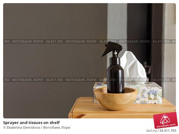 Sprayer and tissues on shelf. Стоковое фото, фотограф Ekaterina Demidova / Фотобанк Лори