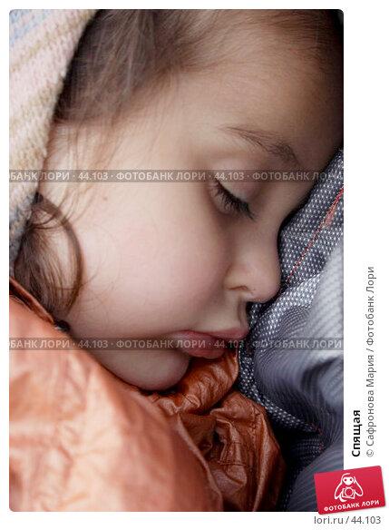Купить «Спящая», фото № 44103, снято 16 сентября 2006 г. (c) Сафронова Мария / Фотобанк Лори