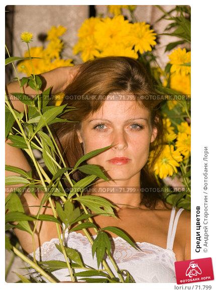 Среди цветов, фото № 71799, снято 28 июля 2007 г. (c) Андрей Старостин / Фотобанк Лори