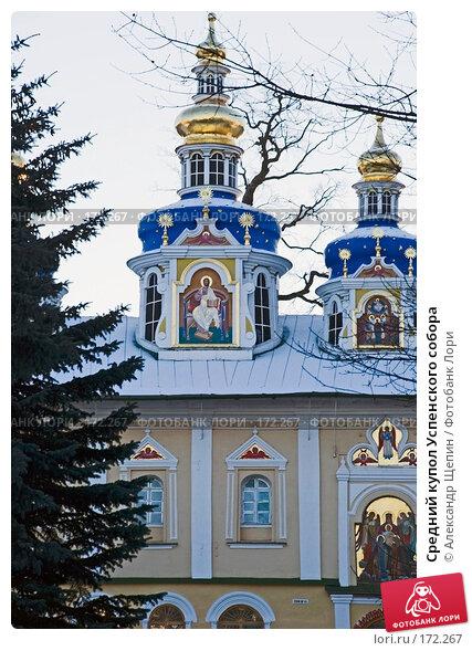 Средний купол Успенского собора, эксклюзивное фото № 172267, снято 4 января 2008 г. (c) Александр Щепин / Фотобанк Лори