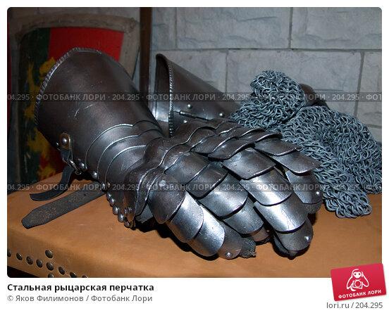 Стальная рыцарская перчатка, фото № 204295, снято 16 февраля 2008 г. (c) Яков Филимонов / Фотобанк Лори